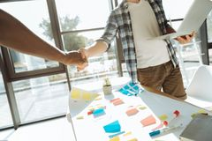Professional colleagues shaking hands in the office Stock Photography