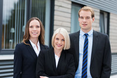 Professional confident team wearing formal clothes royalty free stock photos