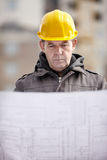 Professional construction royalty free stock image