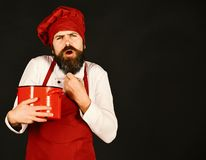 Professional cookery concept. Cook with dissatisfied face holds pot. Professional cookery concept. Cook with dissatisfied face in burgundy hat and apron holds stock images
