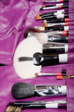 Professional cosmetic brushes Stock Photos