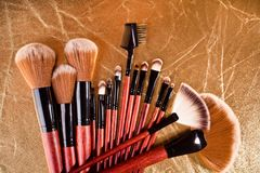 Professional cosmetics brushes Stock Image