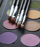 Professional cosmetics, palette with eyeshadow, Stock Image