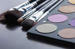 Professional cosmetics, palette with eyeshadow, Royalty Free Stock Image