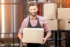 Professional courier with boxes stock images