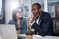 Professional coworkers are exchanging business ideas royalty free stock images