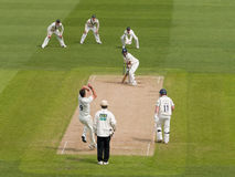 Professional Cricket Match Royalty Free Stock Photos
