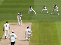 Professional Cricket Match Stock Photos