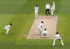 Professional Cricket Match Stock Images