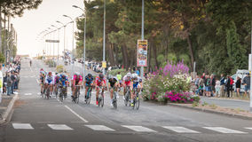 Professional cycling peloton during a night race Stock Photo