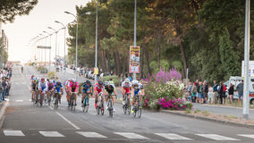 Professional cycling peloton during a night race Royalty Free Stock Photography