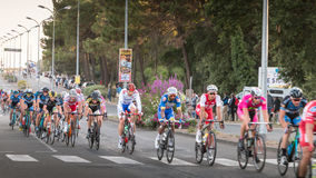 Professional cycling peloton during a night race Royalty Free Stock Images
