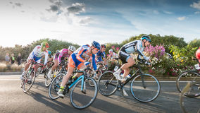 Professional cyclist in a corner at full speed Stock Images