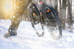 Professional Cyclist Riding the Bike on the Snowy Trail Lit by Sun. Winter Extreme Sports Concept. Stock Photos