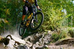Professional Cyclist Riding the Mountain Bike on Autumn Forest Trail. Extreme Sport and Enduro Cycling Concept. stock image