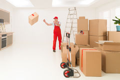 Professional delivery service Royalty Free Stock Photos