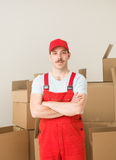 Professional delivery service Royalty Free Stock Photo