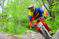 Professional DH Biker is Riding a Mountain Bike on the Trail of Khortytsya Island During the Iron Bridge Competition, a Stage of D Stock Image