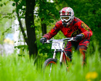Professional DH Biker is Riding a Mountain Bike on the Trail of Khortytsya Island During the Iron Bridge Competition, a Stage of D Stock Photo