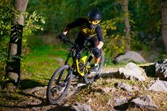 Professional Cyclist Riding the Mountain Bike on Autumn Forest Trail. Extreme Sport and Enduro Cycling Concept. royalty free stock photos
