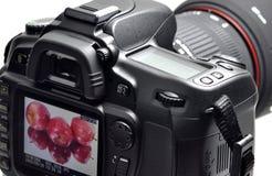 Professional digital camera Stock Image