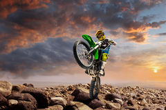 Professional dirt bike rider doing wheely Royalty Free Stock Photo