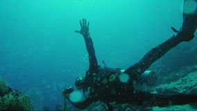 Professional diver-photographer shoots photos under water. HD video stock video footage