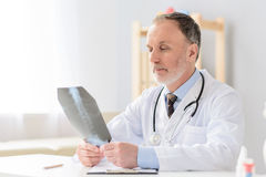 Professional doctor holding radiogram. Taking closer look at problem. Portrait of smiling male doctor examining x-ray in his cabinet Royalty Free Stock Image