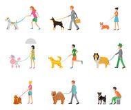 Professional dog walking. People walk their dogs on a leash stock illustration
