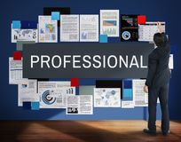 Professional Employee Occupation Organization Concept Stock Images