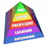 Professional Expert Learner Experience Pyramid. 3d Illustration Stock Photography