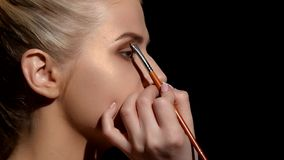 Professional face makeup for photo shooting. Artist applying eyeshadows. Black. Closeup stock video footage