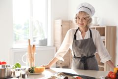 Professional female chef standing near table royalty free stock images