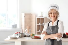Professional female chef standing near table stock photography