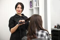 Professional female hairdresser curling client`s hair. In salon royalty free stock photo