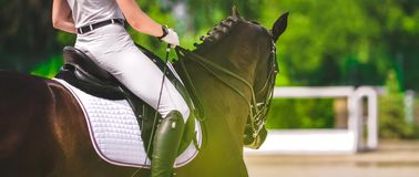 Elegant rider woman in white uniform and sorrel horse. Beautiful girl at advanced dressage test on equestrian competition. Professional female horse rider stock photography