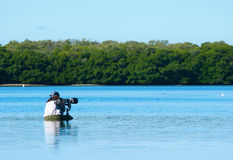 Professional female nature photographer. Shooting in the Florida mangroves Royalty Free Stock Photo