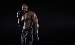 Professional fighter portrait Royalty Free Stock Photography