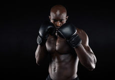 Professional fighter ready for fight Royalty Free Stock Photo