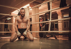 Professional fighter warm-up on training ring Stock Image
