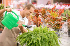 Professional florist holding water pot royalty free stock images