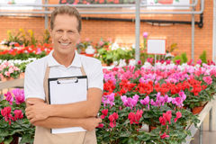 Professional florist workin gin the greenhouse Royalty Free Stock Photos