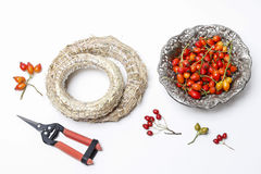 Professional florists accessories: ring and autumn plants Stock Images