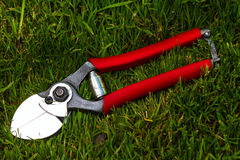 Professional garden secateurs. On a grass background Stock Images