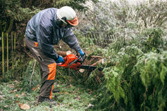 Professional gardener using chainsaw Stock Images