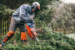 Professional gardener using chainsaw Royalty Free Stock Images