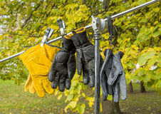 Professional gloves Royalty Free Stock Photography