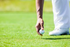 Hand of Professional Golf Player teach how to Teed Up Golf Ball Royalty Free Stock Photo