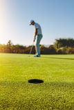 Professional golfer putting ball in hole. Vertical shot of golf hole in the green field with golfer in background. Golf player putting ball in hole Royalty Free Stock Image