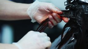 Professional hair color in the beauty studio. stock video